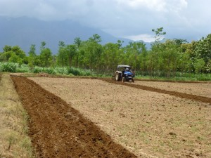 Village India ploughing5
