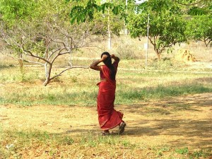 Tamil Village India Pichamani 15