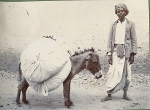 dhobi donkey_and_man